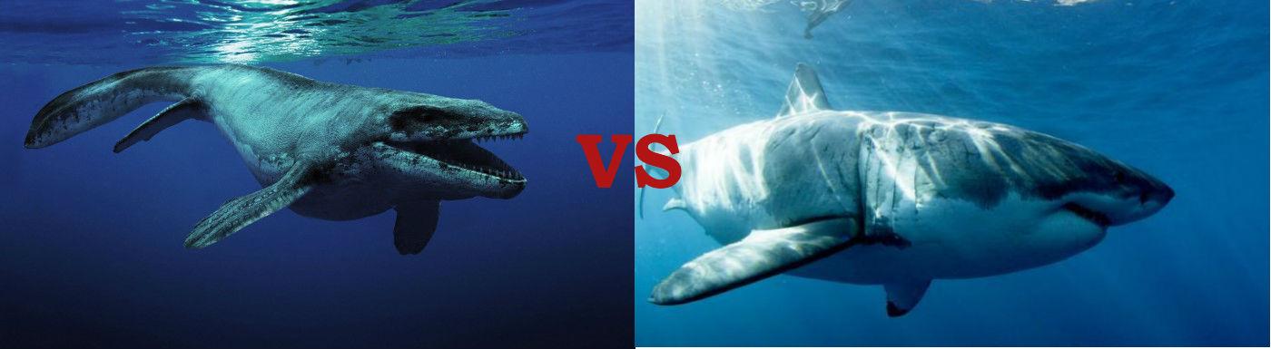 Megalodon vs Mosasaurus: Who would win?