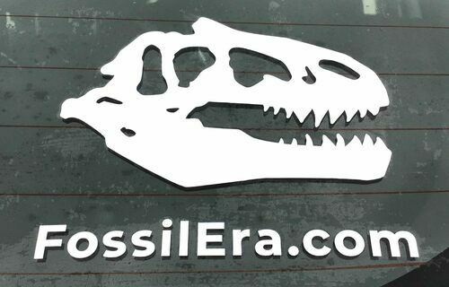 Allosaurus Decal