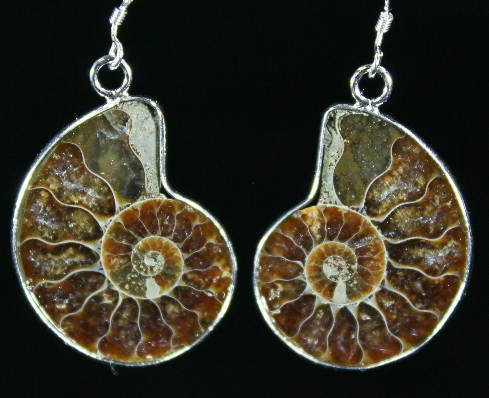 605c13bb8 Stylish Fossil Ammonite Earrings For Sale (#26561) - FossilEra.com