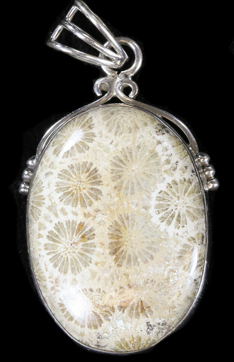 20 million year fossil coral pendant for sale 38094