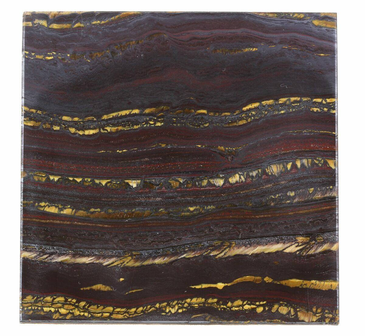 4 Tiger Iron Stromatolite Shower Tile