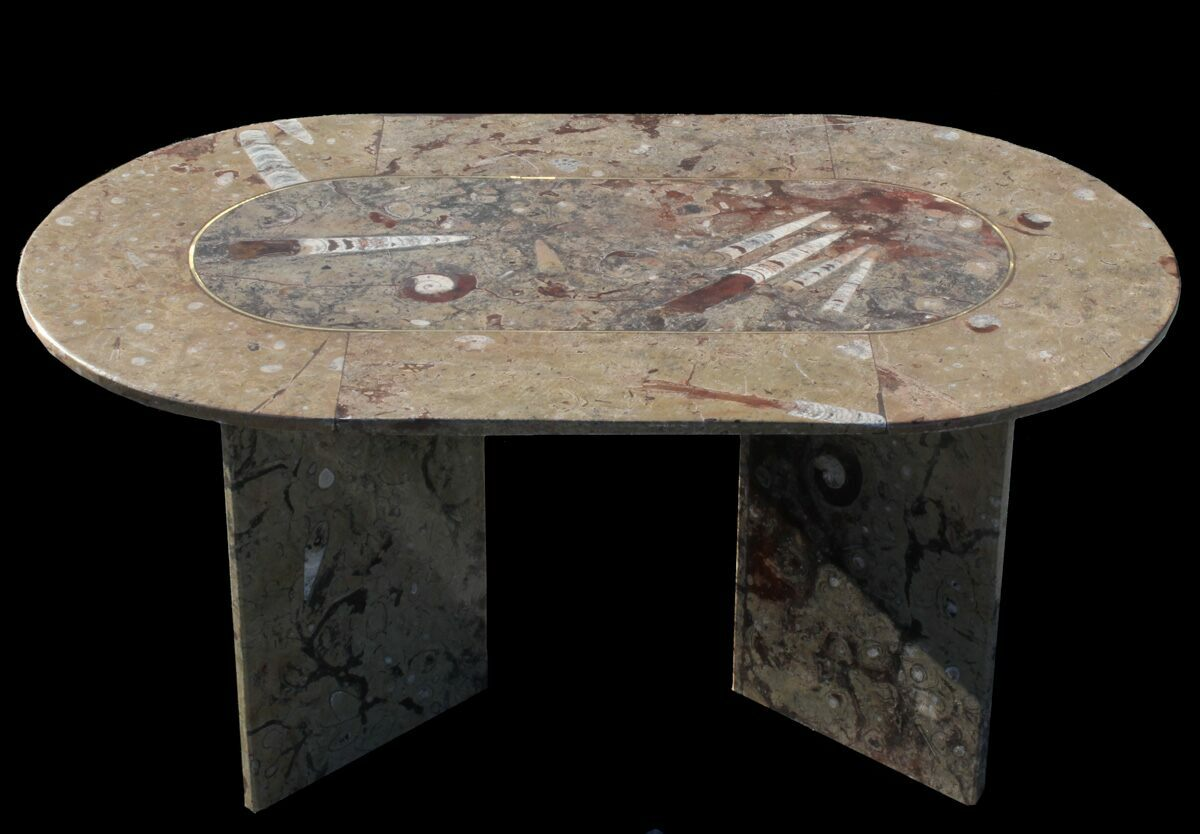 39 x 24quot coffee table with fossil orthoceras goniatites for Fossil coffee table