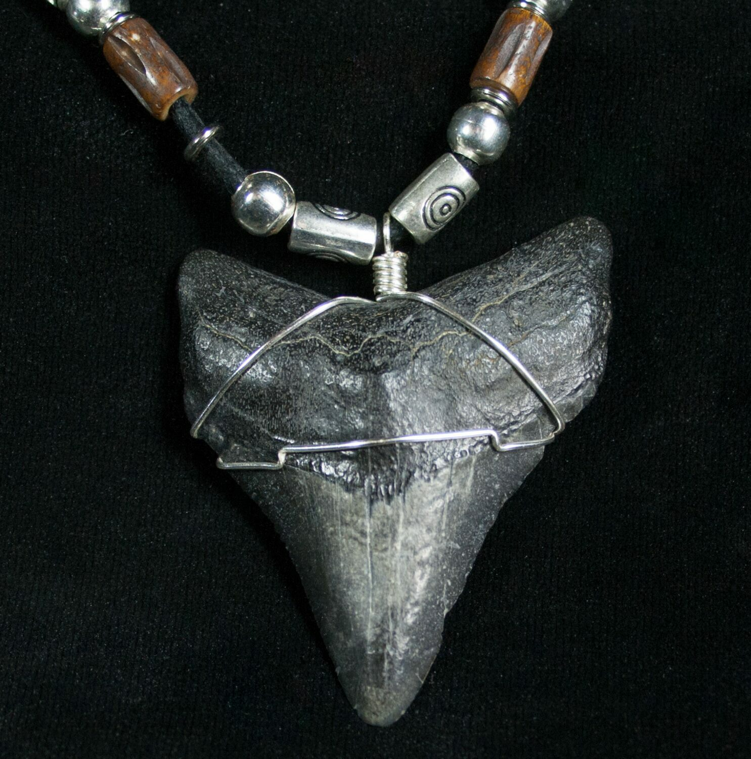 Megalodon shark tooth necklace