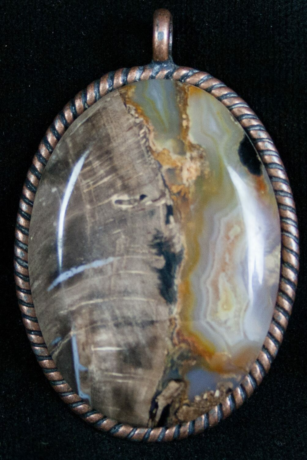 Blue forest petrified wood pendant for sale 7247 fossilera blue forest petrified wood pendant aloadofball Images