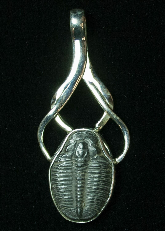 sterling silver elrathia trilobite pendant for sale 8595