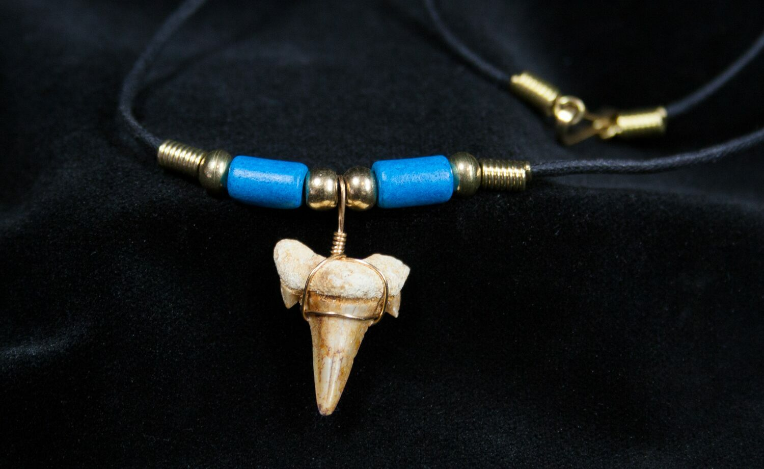 Fossil Shark Tooth Necklace For Sale (#602) - FossilEra.com